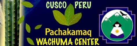 cropped-cropped-wachuma-center-logo-pachakamaq.jpg