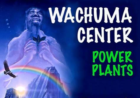 Wachuma Center - copia