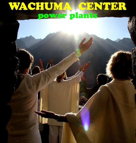 WACHUMA CENTER LOGO  copy 2
