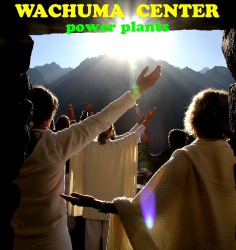 WACHUMA CENTER LOGO  copy 2
